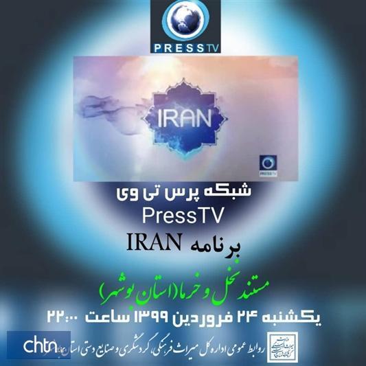 نخلستان های بوشهر در قاب رسانه های ملی و بین المللی